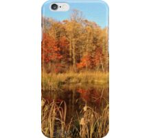 View from a gravel road in Minnesota iPhone Case/Skin