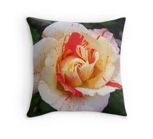 Rose of Beauty Throw Pillow
