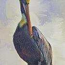Water Way Pelican by Deborah  Benoit