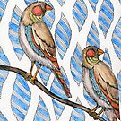 Finches by samclaire