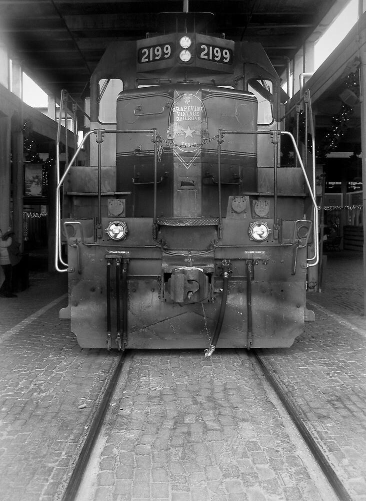 Grapevine Railway  by John  Kapusta