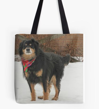 Mssr. Helmoots Favorite Scarf Tote Bag