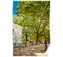 Spring with beatiful street lamp Poster
