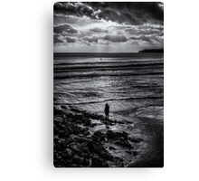Watcher On The Shore Canvas Print