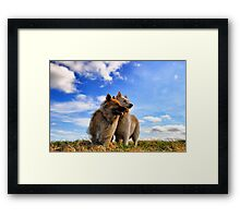 Movie Shot! Framed Print