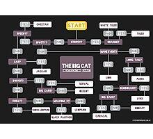 Big Cat Identification Chart Photographic Print