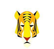 AnimalKingdom - Tiger Photographic Print