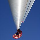 Flagpole by Lee LaFontaine