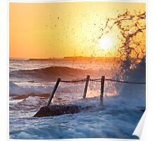 Summer Sun - Newport Beach NSW Poster