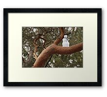 Snowman Climbed Tree Framed Print