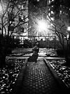 Black and White Parks by kalikristine