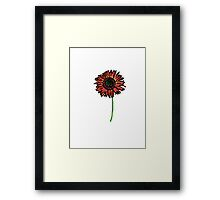 Red Himawari - Zen Sunflower Framed Print