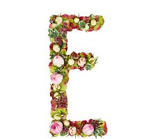 Capital Letter E Part of a set of letters, Numbers and symbols  by PhotoStock-Isra
