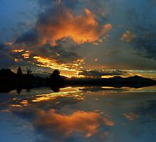©HCS The Logical Cloud by OmarHernandez