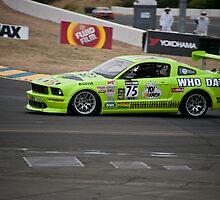 Mustang LeMans GT by DaveKoontz