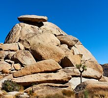 Cap Rock by Alex Preiss