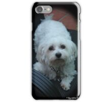 iPhone cover With Cute dog iPhone Case/Skin