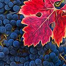 Harvest Grapes by Brendon Perkins