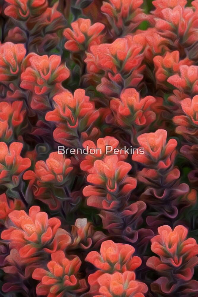 Salmon Fields by Brendon Perkins