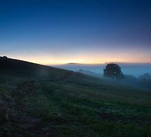 Misty Morning by Craig Jennings