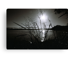 Reflections in Monochrome Canvas Print