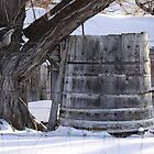 Water Cistern at Old Homestead by Roz Fayette