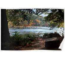 Mountain Fork Park...From The Trees Poster