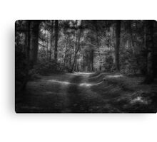 Great Heads Wood Roundhay Park B&W (HDR) Canvas Print