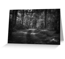 Great Heads Wood Roundhay Park B&W (HDR) Greeting Card