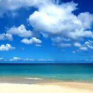 Beach Life by John Dalkin