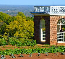 From the Top of Monticello by John D'Alessandro