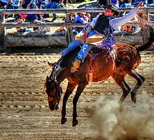 Harvey Dickson's rodeo 2012, Boyup Brook WA by michelle robertson