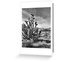 Joshua Tree, Red Rock Canyon National Conservation Area, Nevada Greeting Card