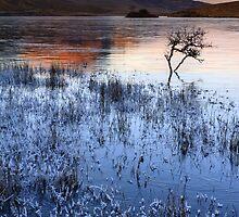Old Man Of Storr. Winter. Isle of Skye. Scotland. by photosecosse /barbara jones