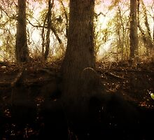 Golden Haze, Dream by sinaprax