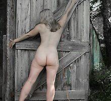 The Door No.1 by David Robinson