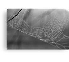 Lonely Web Canvas Print