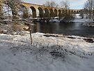 Arthington Viaduct, West Yorkshire #2 by Graham Geldard