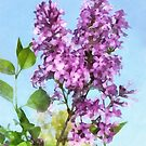 Lilacs Against the Sky by Susan Savad