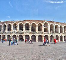 The Arena by Martina Fagan