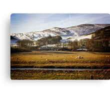The River Tweed Canvas Print