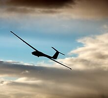 Soaring by ZWC Photography