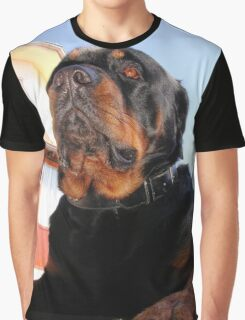 Regal and Proud Male Rottweiler Portrait Graphic T-Shirt