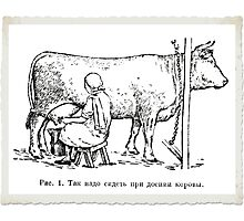 Where Milk REALLY comes from! Photographic Print
