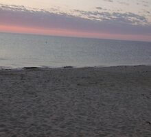 Beach with pink sky by agrusag