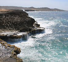 Aruba Coastline by jritucci