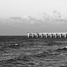b&w navarre beach, FL by Carina Potts