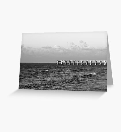 b&w navarre beach, FL Greeting Card