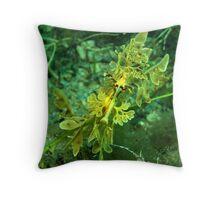 Rapid Bay Leafy Seadragon Throw Pillow