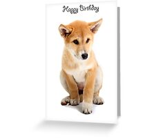 A dingo Happy Birthday 2P Greeting Card